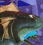 Seaslug