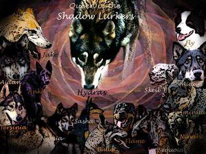 ShadowLurkersjpg