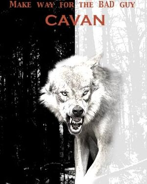 Cavan2