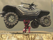 Halo3warthoglift