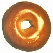 Authentic-new-york-bagel