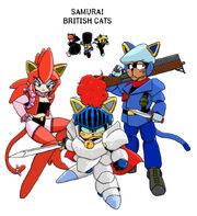Samurai British cats color