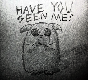 Haveyouseenme