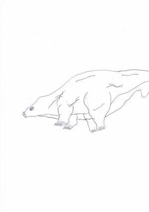 Stubby Hippopod