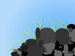 Eocene Split – Himalayan Grass