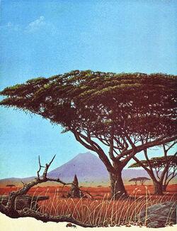 Tropicalgrasslands