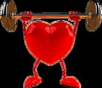 Heart Image5