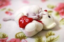 Heart Image4
