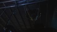 Ceiling Sara