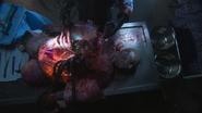 Portus Autopsy