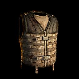 PALS Vest