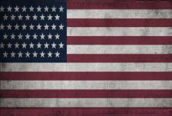 USA Flag The Line