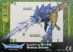 Shakor Bristle Card