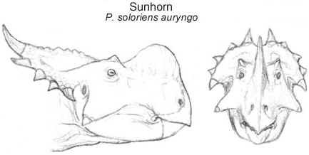 Sunhorn