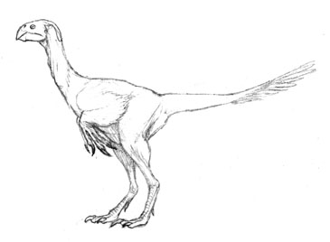 Gallosaur