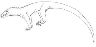 Laced-crocvar
