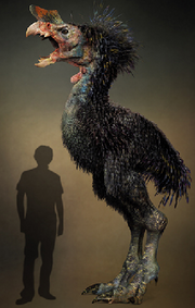 Tyrannornis imperator