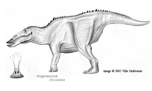 Hippohadrus