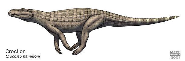 Croclion