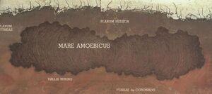 Amoebic Sea map