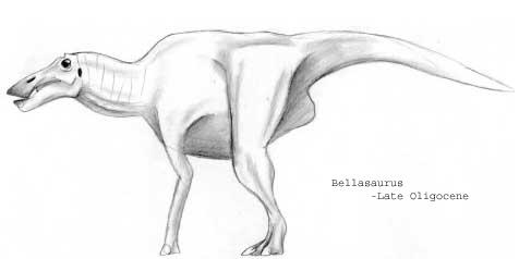 Bellasaurus
