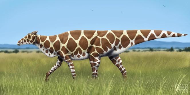 Harlequinlope