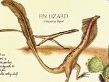 Fin Lizard