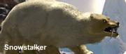 Snowstalker
