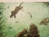 Dirt turtle