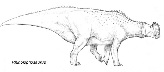 Rhinolophosaurus