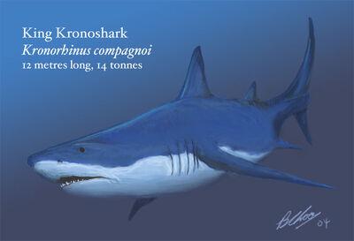 Kronoshark1