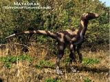 Spec Dinosauria: Boreonychidae