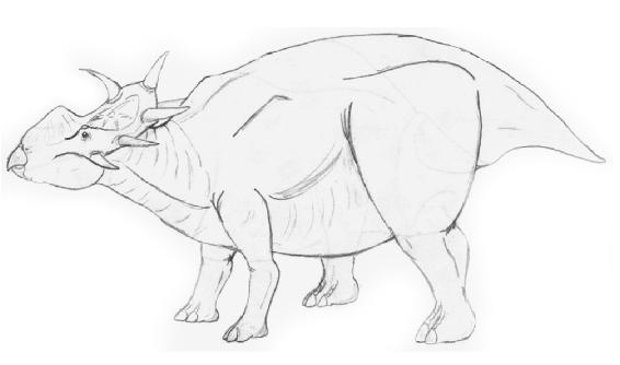 Brontoceratops robustus