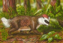 New zealand pseudobadger by alexsone-d4n47nq