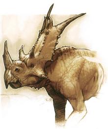 Chalyceratops