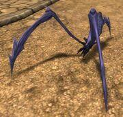 Calaspider avatar image