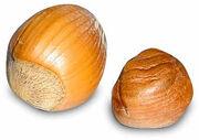 Hazelnut-380