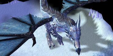 WinterDragon Aryn