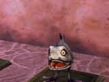 Exo-Piranha