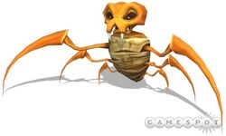 Wasp Spider