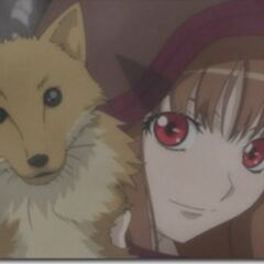 Holo with Fox scarf