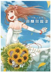 Spice and Wolf Fan Book Cov