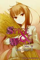 Light Novel Volume 13