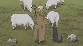 Nora and Sheep