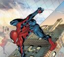 Spider-Man House of M