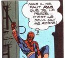Spider-Man - Costume d'occasion