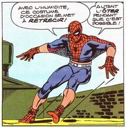 Spider-Man - Costume d'occasion 3