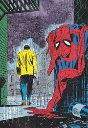 Spider-man-no-more