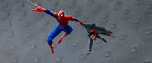 Spider-Man salvándole la vida a Miles - Into the Spider-Verse