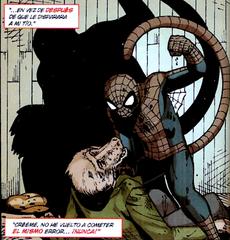 Spider-Monkey vs ladron